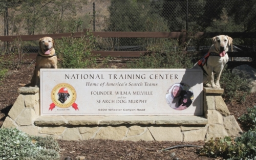 NTC Welcome Sign