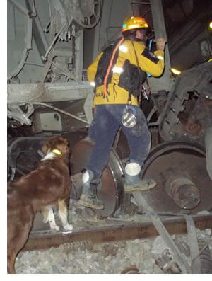 Train crash worst in Metrolink history - Media City Groove  |Chatsworth Train Wreck California
