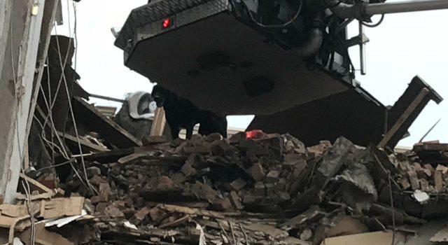 Search Teams ensure no survivors left behind in Poughkeepsie building collapse