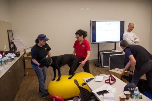 SDF Hosts Canine Wellness Workshop at NTC