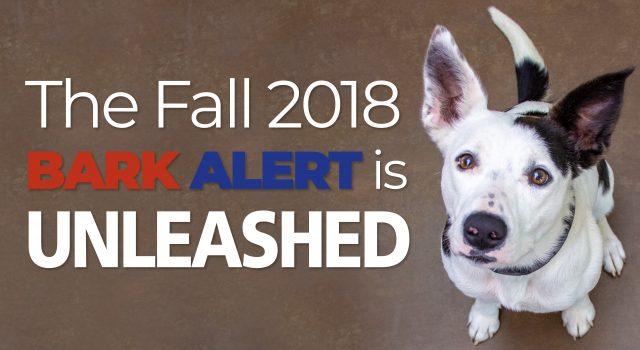 Fall 2018 Bark Alert